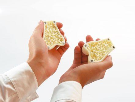Magnetic Bone in hands - BioMimics