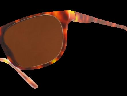 Vero Flex Eyewear